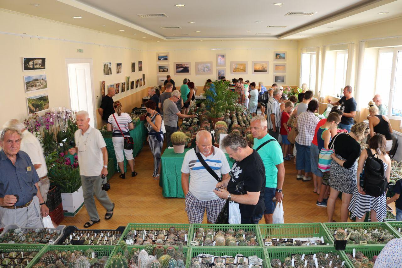 Kaktuszok és pozsgás növények, valamint ásványok kiállítása és vására